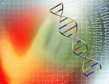 Living Things Are Based On A Universal Genetic Code All Living Things Have Dna From Humans To Animals Coding Characteristics Of Living Things Genetics