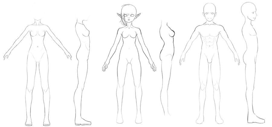 Base Model Sheets By 3dmodeling On Deviantart Body Reference Character Model Sheet Female Character Design