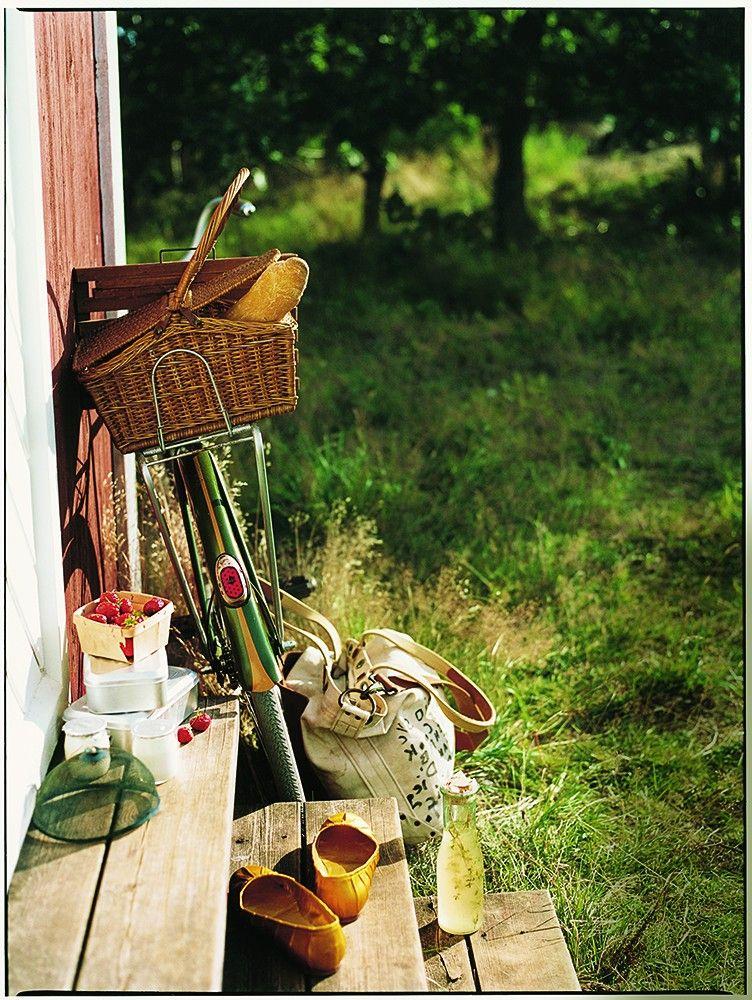 Fietsen door weilanden. Meer over routes en boeren? Ga naar : http://www.milkstory.nl/event/10-km-loeiend-heino   Lifestyle/Travel | Con Poulos