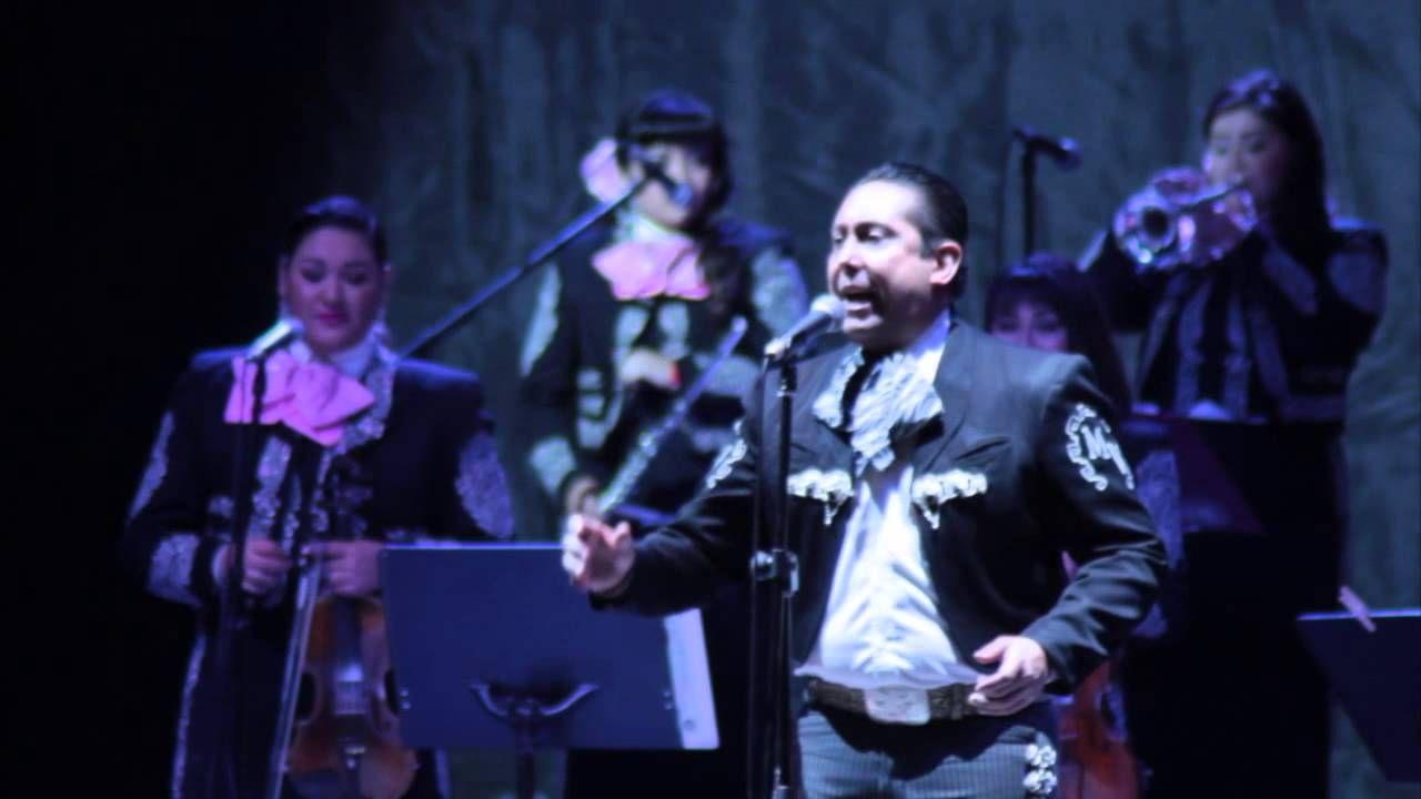 Arturo Vargas And Mariachi Divas De Cindy Shea Dueto A Puro Dolor Youtube Musician Music