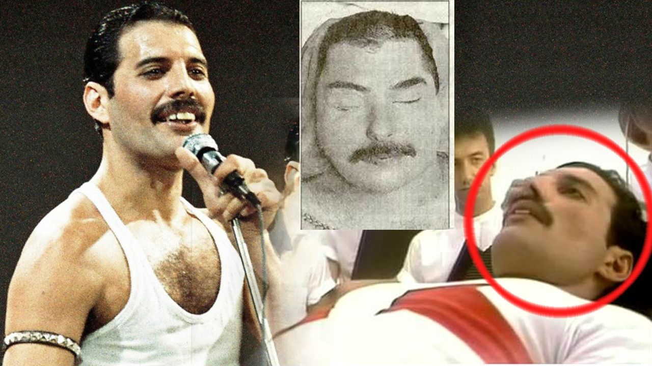 17 Freddie Ideas Queen Freddie Mercury Freddie Mercury Queen Band