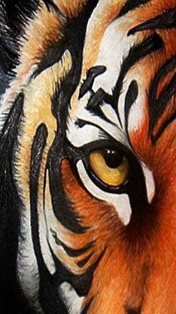 Download Tiger Eye 40630 Pets Animals Mobile Wallpapers Wreths