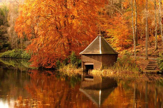 Autumnal leaves are reflected in Loch Dunmore in Perthshire, Scotland