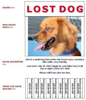 Marvelous Dog · Lost And Found Dog Flyer ... Inside Lost Pet Flyer Maker