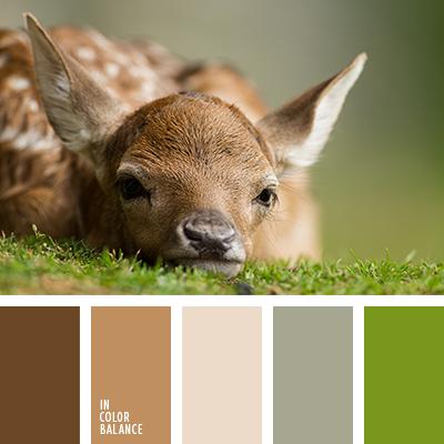 beige y marrón, color piel de ciervo, color verde bosque, color verde hierba, crema y marrón, crema y verde, crema y verde pantano, cremoso, de color verde lechuga, gris pantano, marrón claro, marrón oscuro, marrón rojizo, marrón y beige, marrón y verde, pantanoso, tonos