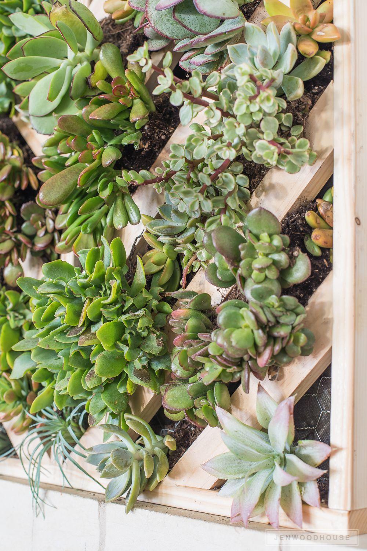 How To Make A Vertical Succulent Garden Vertical Vegetable
