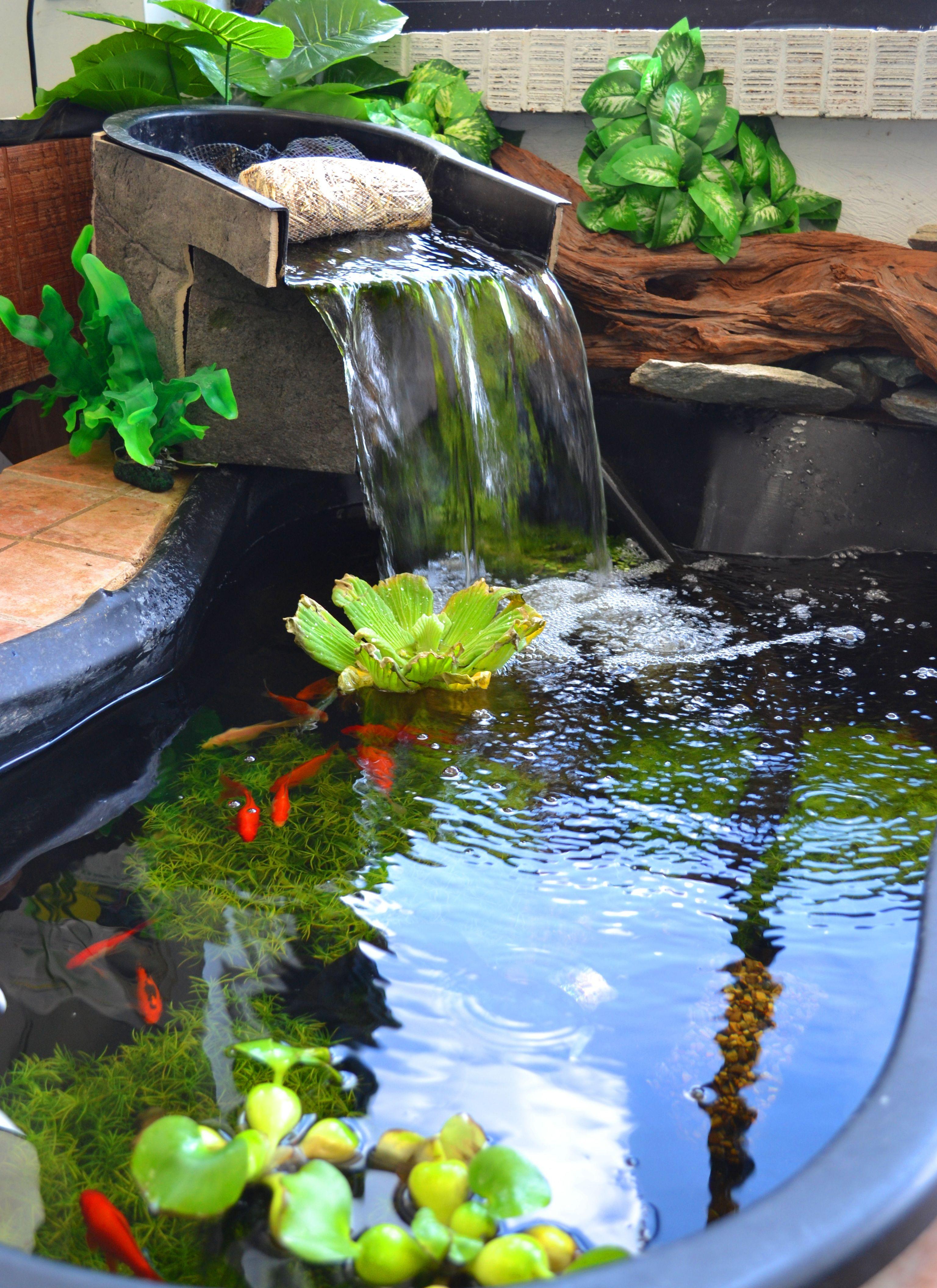 Fuente de agua y peces pinteres - Fuentes de cascada ...