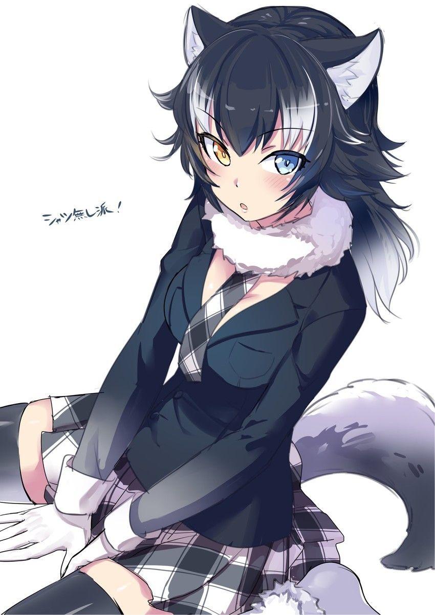 Wolf girl beautyfull art girl in 2019 anime neko - Wolf girl anime pictures ...