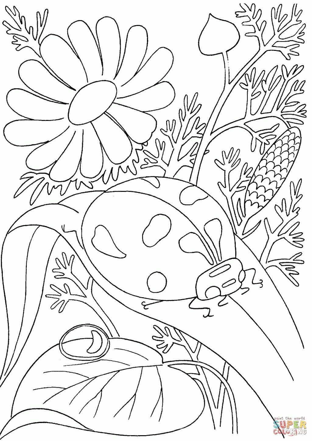Baseball Adult Coloring Pages Free Printable Flower