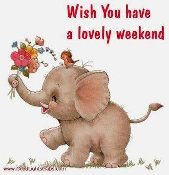 Wish U A Great Weekend Weekend Pinterest Elephant Cute