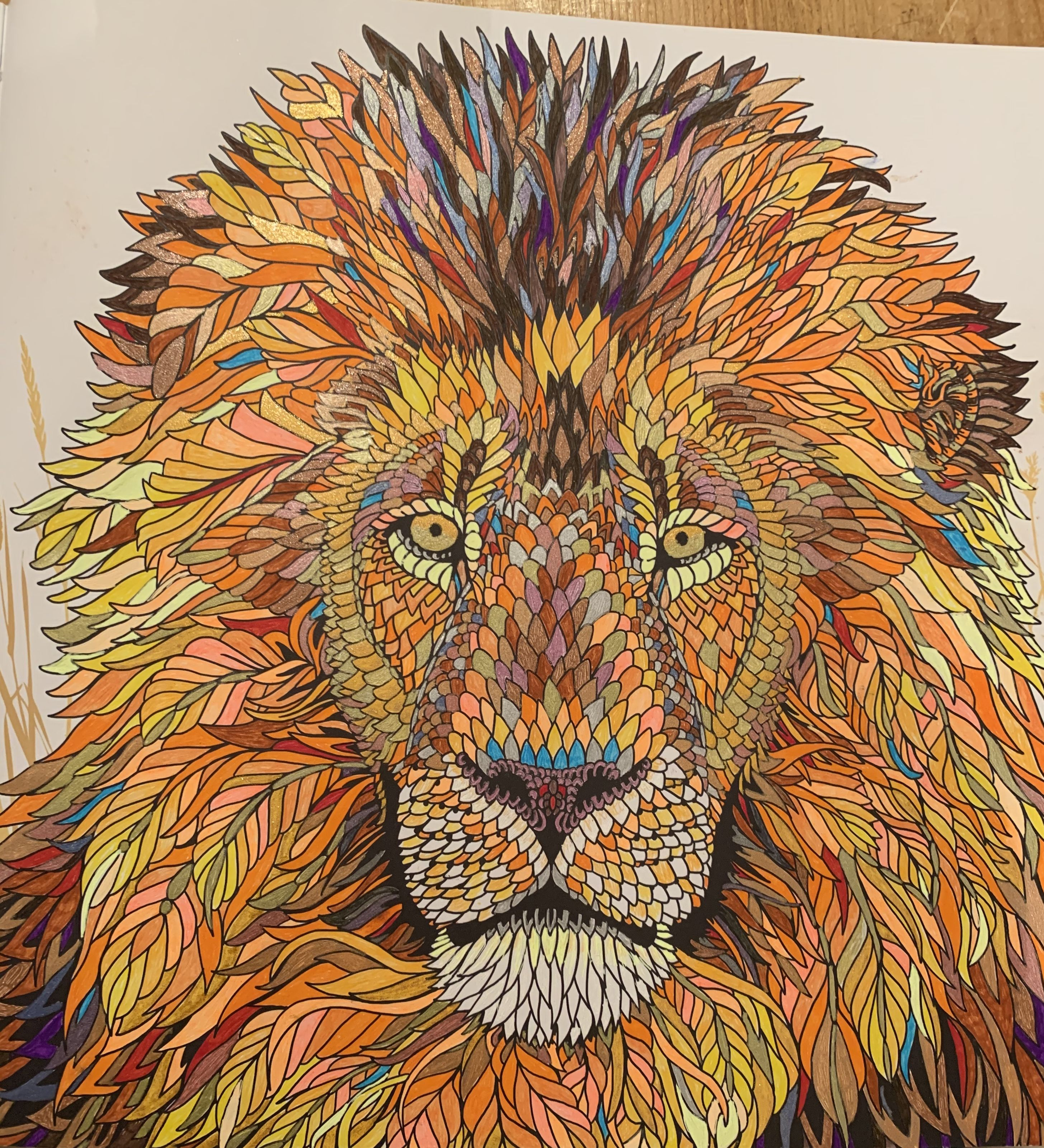 The Menagerie Colouring Book Lion One Of My Favourites To Colour Used Gel Pens Including Pearlesce Lion Painting Lion Painting Acrylic Animal Coloring Books