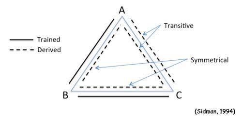 Triangle of DOOM...or stimulus equivalence, depending on
