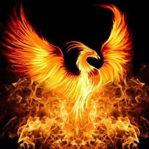 red moon 2019 phoenix - photo #14