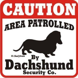 I'd think twice if I knew a weiner dog was on the premises.