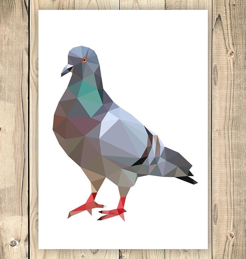 Pigeon Bird Illustration Geometric Style Artofoxo Bird Illustration Geometric Bird Bird Art