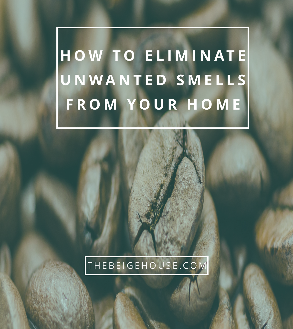 How To Eliminate Unwanted Smells From Your Home The