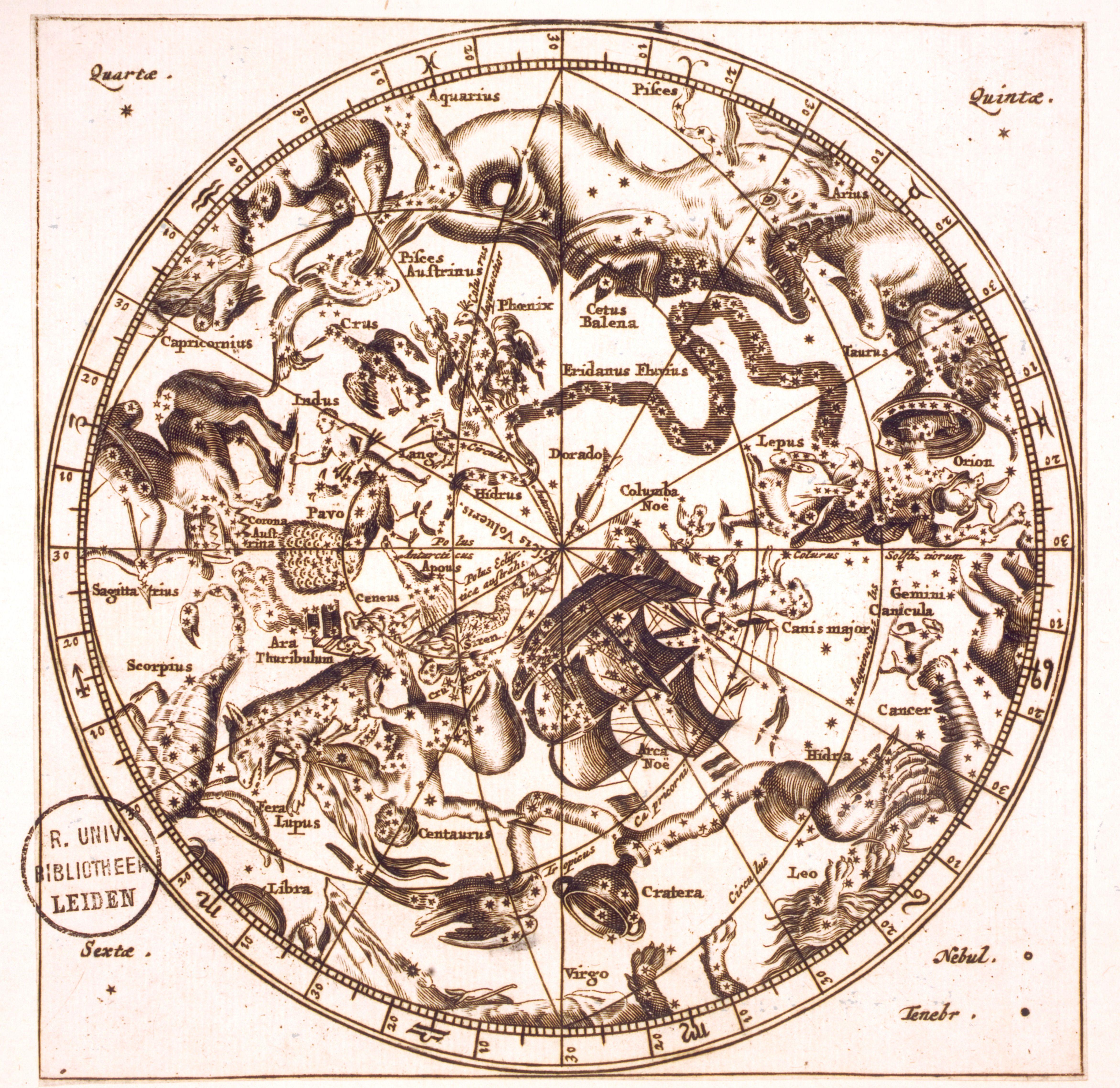 Celestial Star Map Google Search