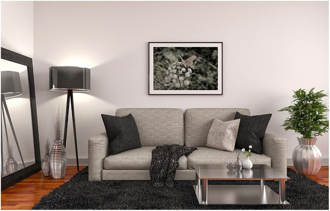 Best Asian Paint Color For Living Room in 2020 | Living ...