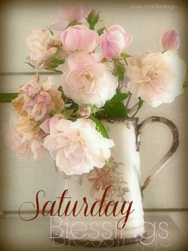 Lovely Saturday Memes, Happy Saturday, Saturday Greetings, Good Morning Saturday, Hello  Weekend, Morning Sayings, Morning Images, Blessings, Night