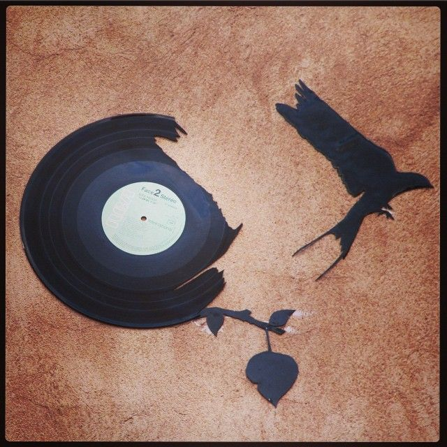 #streetart #vinyle #france #strasbourg #bird #tribegram #igersfrance #incredible_masterpiece #vinyl  #freedom #vinylme #rsa_streetart