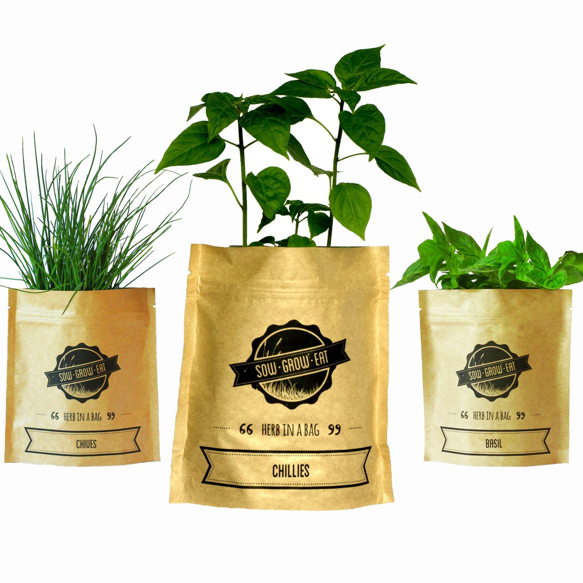 Herb in a Bag Bundle Herb growing kits, Herbs, Homegrown