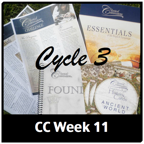 Half-a-Hundred Acre Wood: Cycle 3 Week 11 Weekly Link-Up