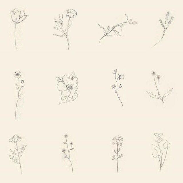 Flores Minimalistas Minimalist Flowers Tatuajes De Símbolos