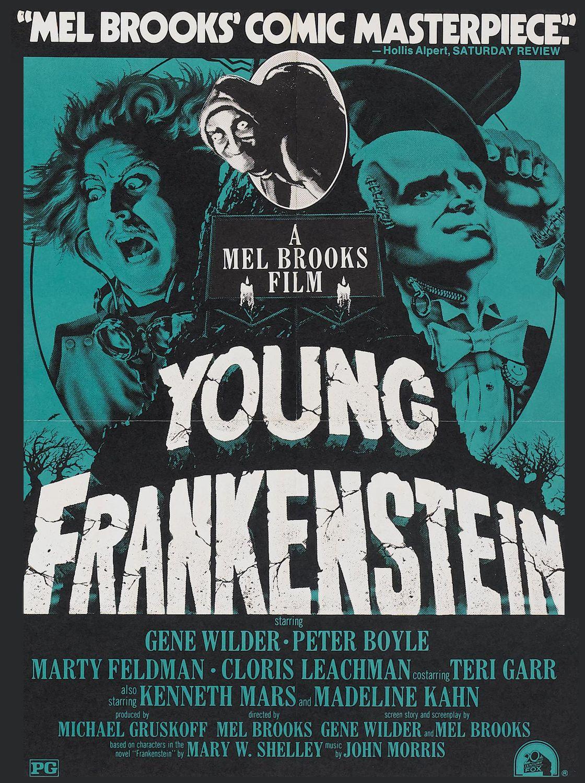 o jovem frankenstein frankenstein filmes