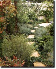 plant nursery landscape design and yard maintanance in Las Cruces