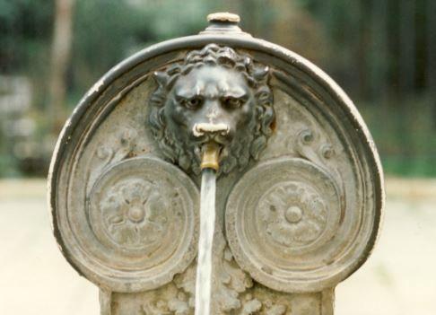 Löwe Wasserspeier, Venedig   Foto: S. Hopp