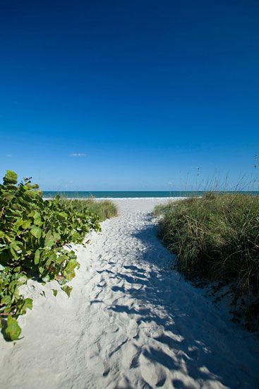 International Palms Resort Cocoa Beach In Cocoa Beach, FL