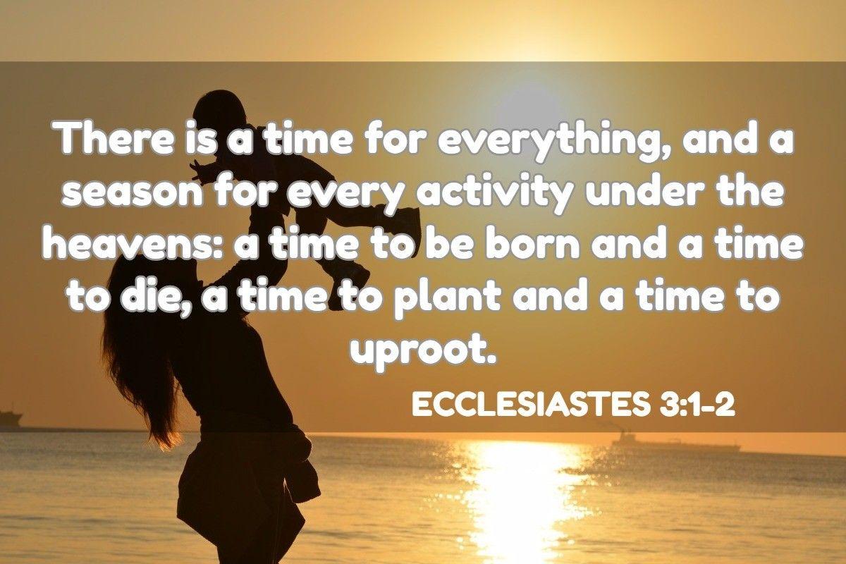 Ecclesiastes 3 1 2 Ecclesiastes Ecclesiastes 3 Grief