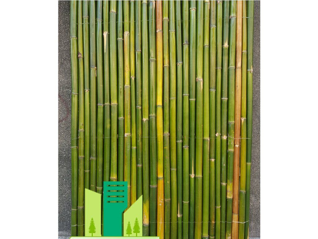 Home Interiors Amazing Bamboo Fence Panels Home Depot