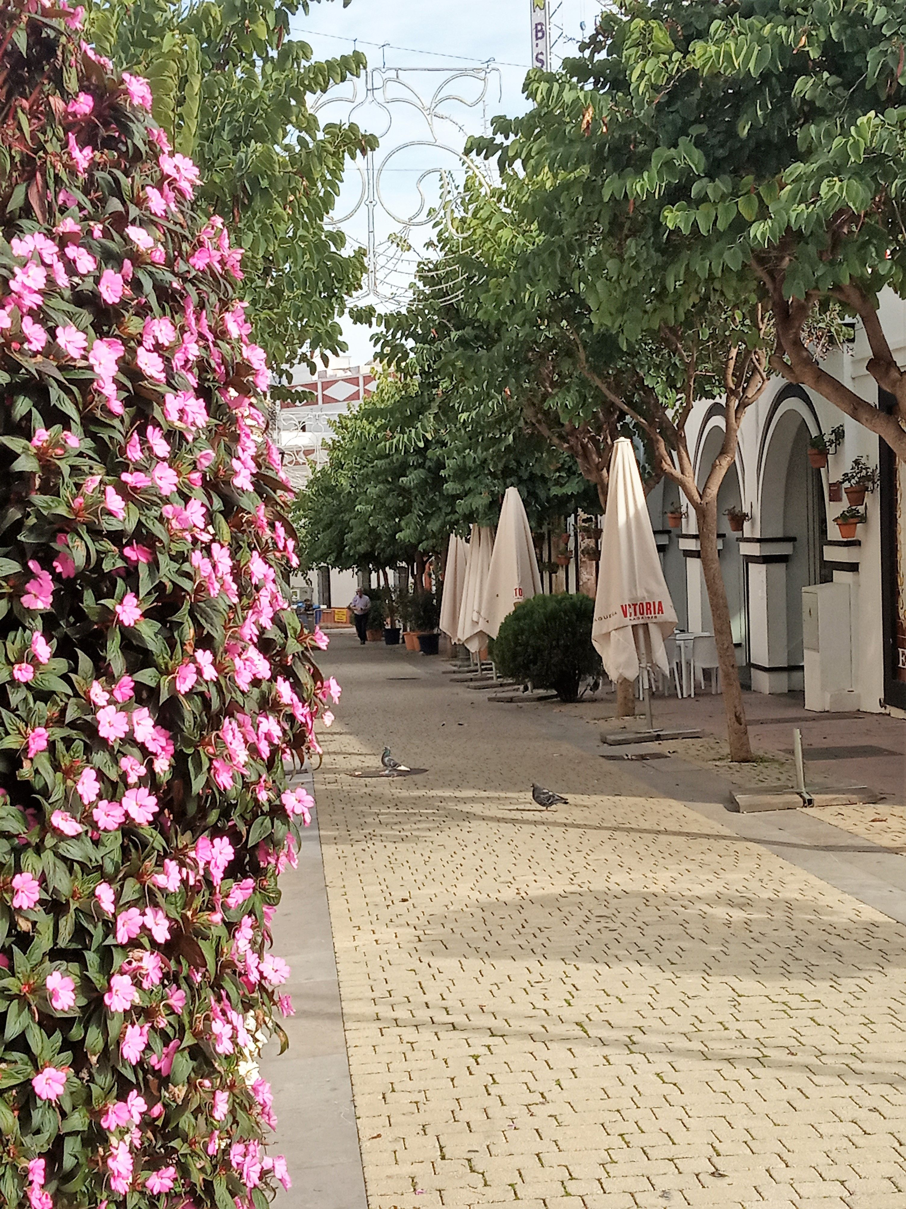 Streets of Estepona Taking a walk through the Spanish coastal town of Estepona, you will come acros