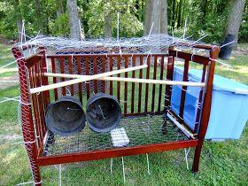 Josh Day's chicken coop