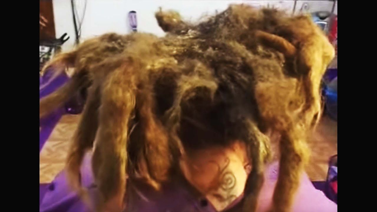 washing my hair for the first time since i was born... (20 ...