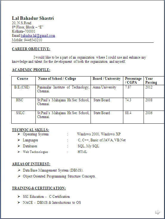 Single Page Resume Format For Freshers