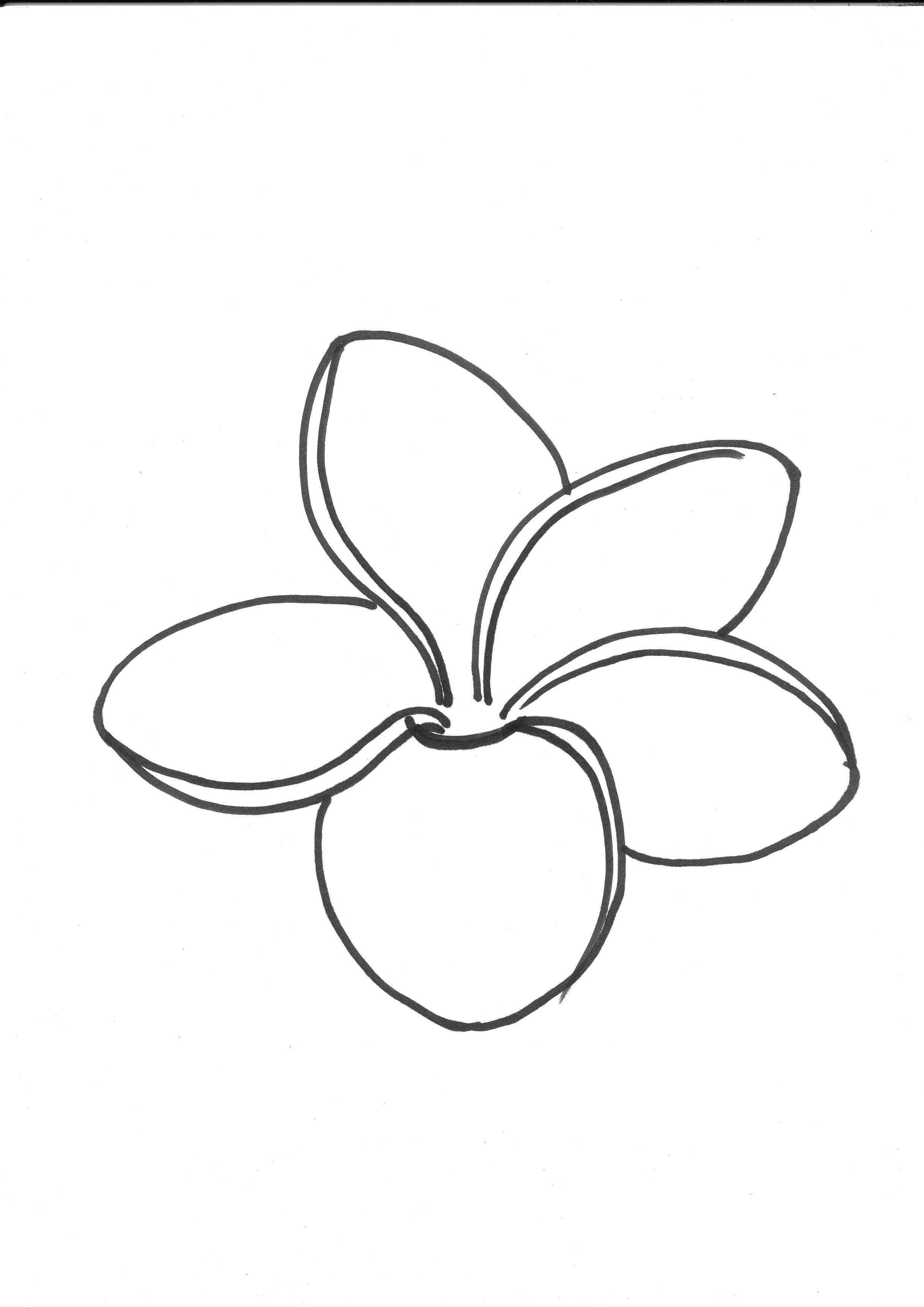 Frang 0007 Jpg 2 480 3 507 Pixels Flower Line Drawings Flower Tattoo Drawings Flower Drawing