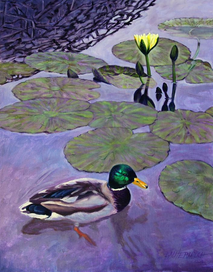 Mallard Duck In Lily Pond Painting