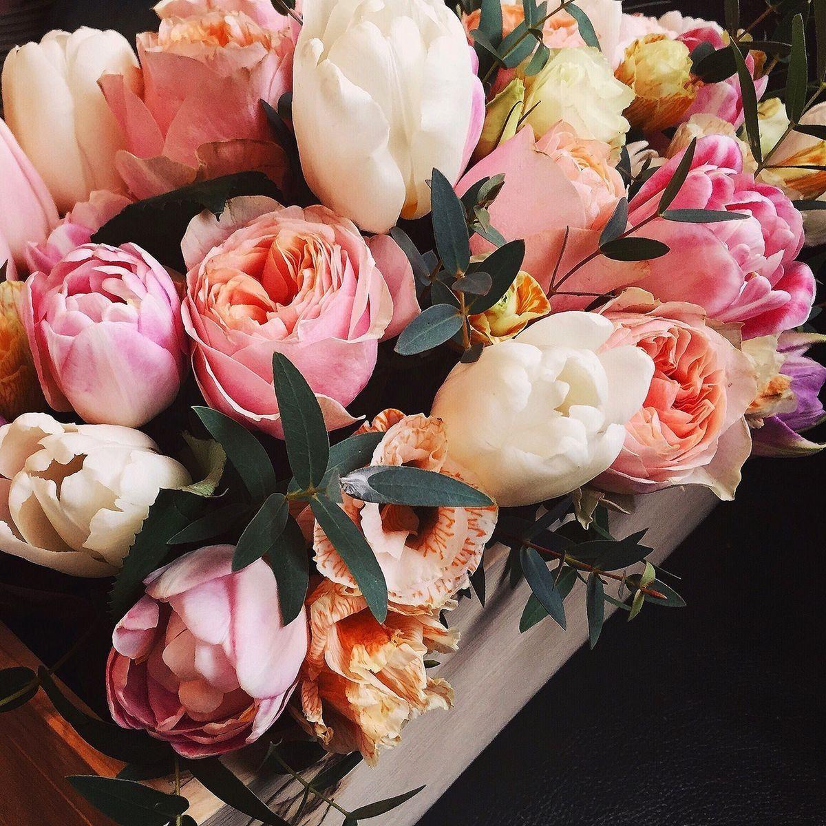 Pin By Makarova On Lyrics Pinterest Pretty Flowers Plants And