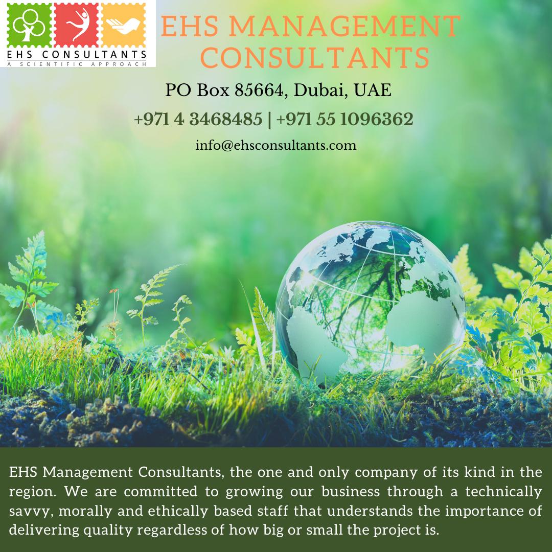 EHS Management Consultants the professional management