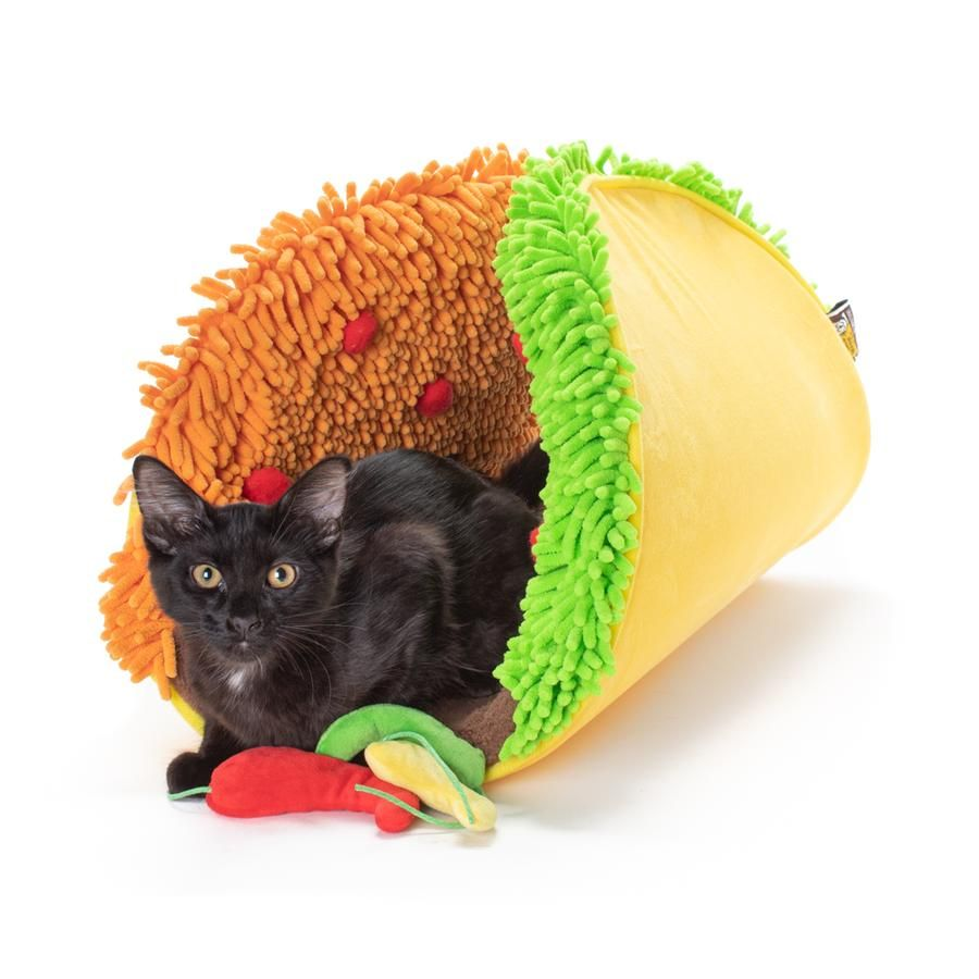 Taco Meow Cat Bed & Play Mat Cat room, Cats, Cute little