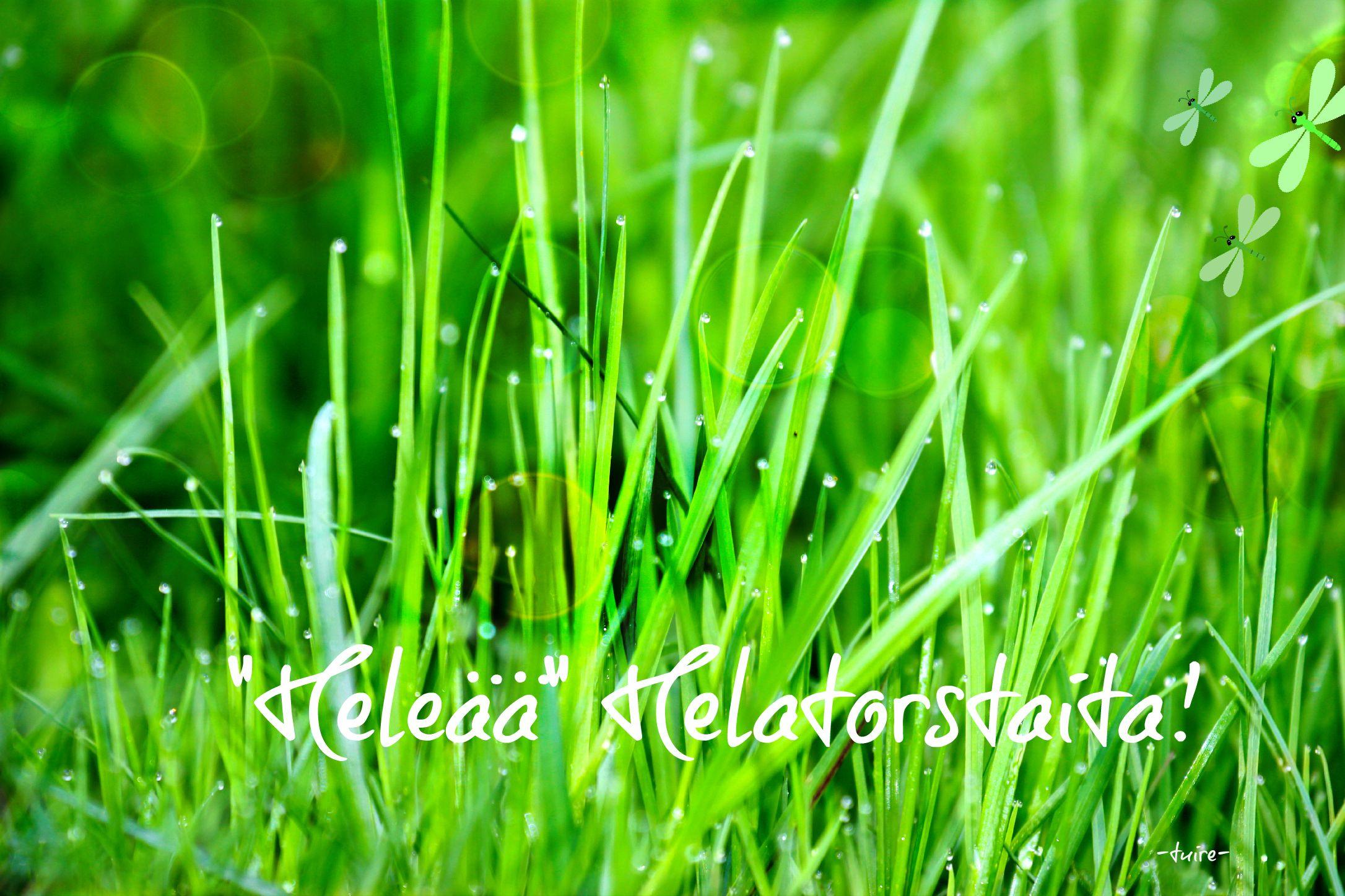 Keväinen ruoho vihertää :)