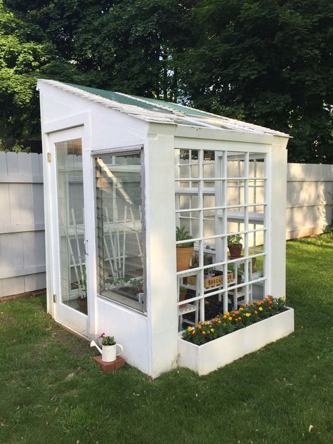 Greenhouse Made From Old Windows Easy To Do Yard