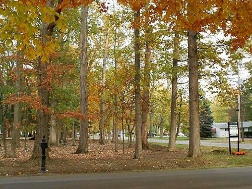 FSBO Galion OH - Ohio Wooded Lot W Land Contract 0 Int $190 mo - land sales contracts