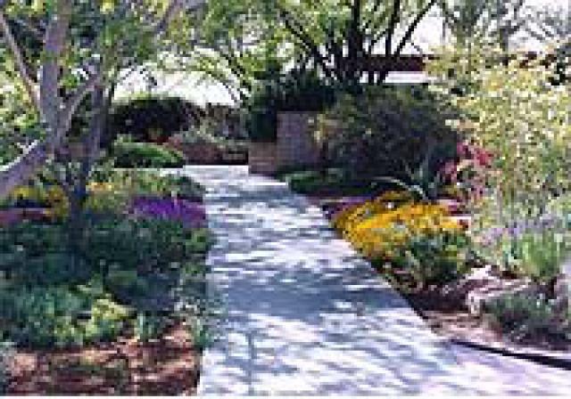 4916eeeade864a0a057a34e6043ae1d1 - The Gardens At The Las Vegas Springs Preserve