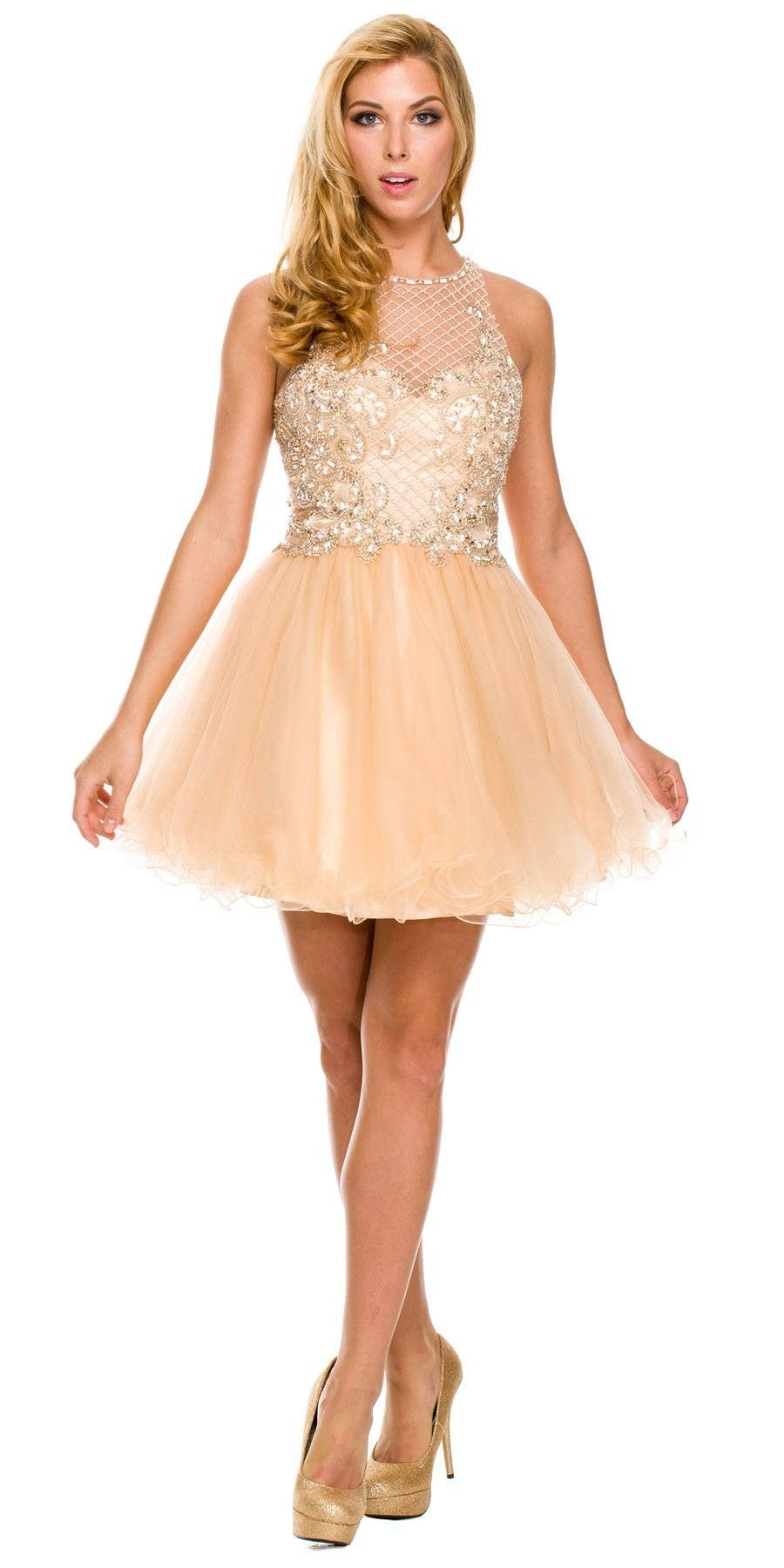 Short poofy formal gown silver tulle skirt a line high neck formal