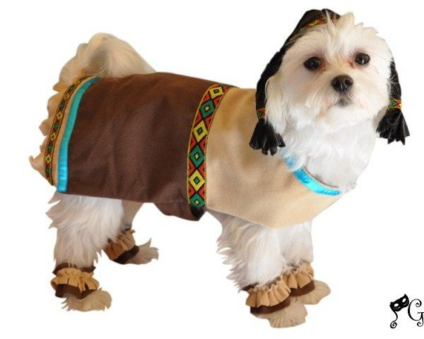 Indian Dog Costume Omg I Am So Wanting This For My Dog Lol