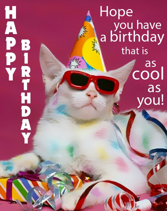 Happy Birthday- Funny Birthday eCards, Pictures and Gifs ...