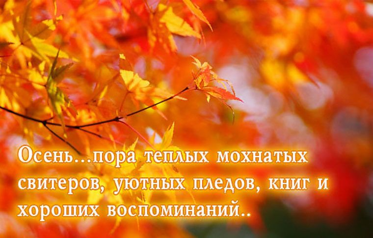 дома продаются мысли про осень картинки синем небе